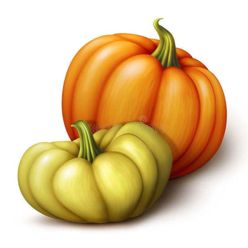 De herfst oranje en gele pompoenen, de seizoengebonden die illustratie van de klemkunst op witte achtergrond wordt geïsoleerd royalty-vrije illustratie