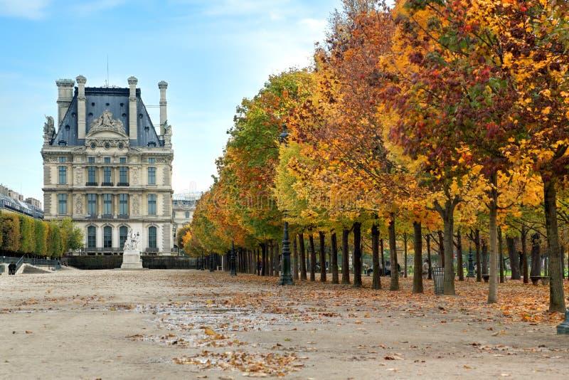 De herfst in Parijs stock foto's