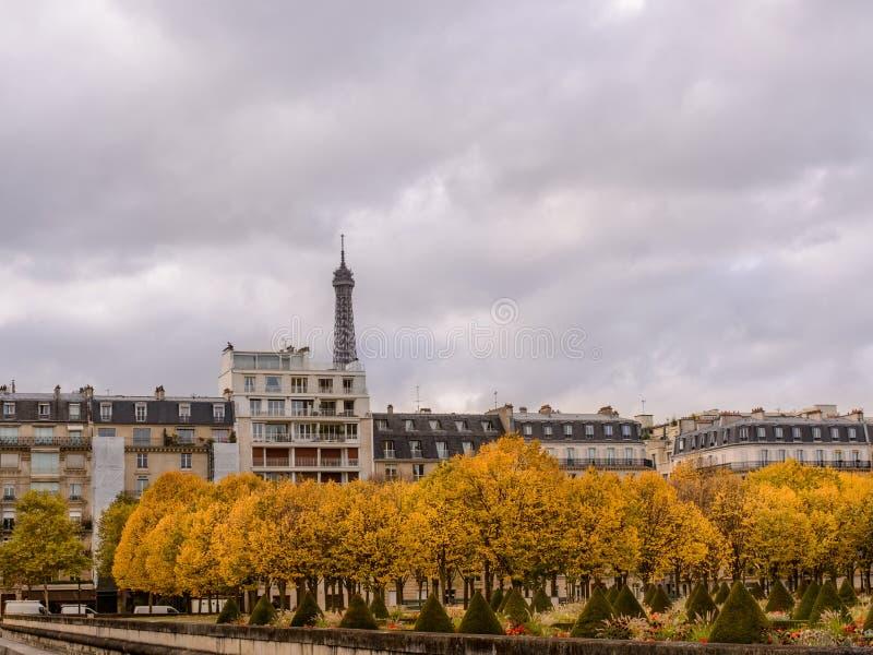 De herfst in Parijs, stadshuizen onder de gele toren bomen achtergrond van Eiffel stock afbeeldingen