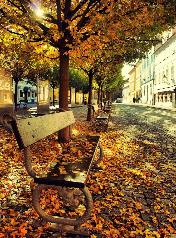 De herfst in Praag/Kampa stock foto's