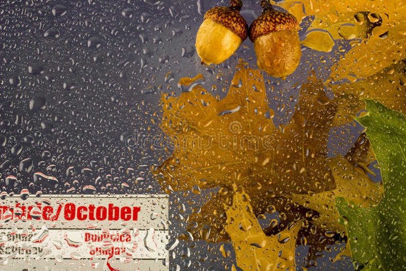 De herfst regenachtige bewolkte dag met droge bladeren, dalingen van water op het glas, eikels en Oktober-kalender royalty-vrije stock fotografie