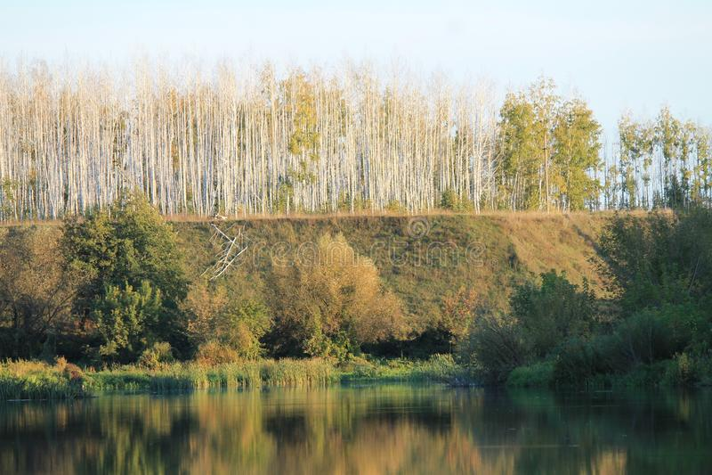 De herfst, rivier, de herfst bos, oranje bos, landschap royalty-vrije stock foto