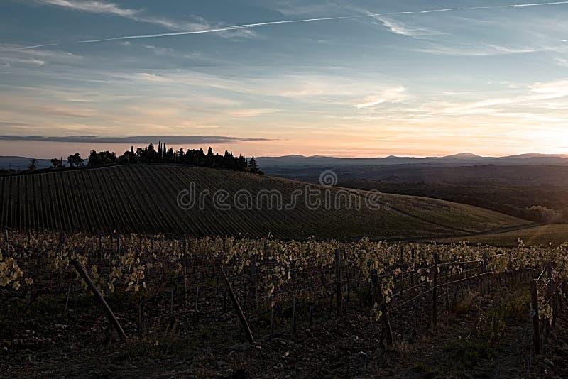 De herfst van chianti` s wijngaarden, zonneschijn dichtbij aan de nacht royalty-vrije stock foto's