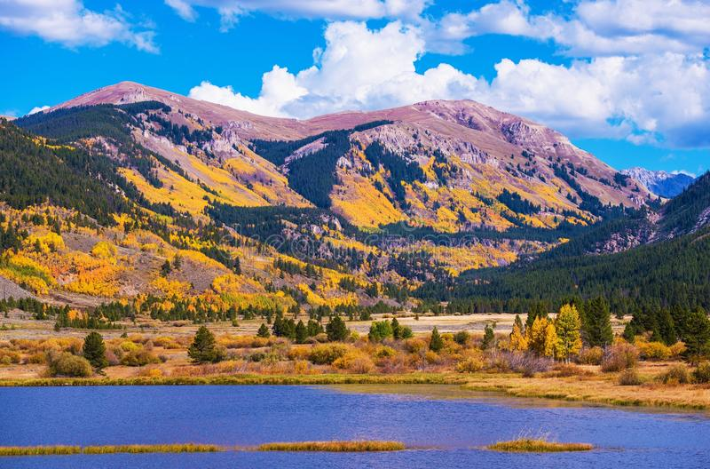 De Herfst van Colorado stock afbeeldingen