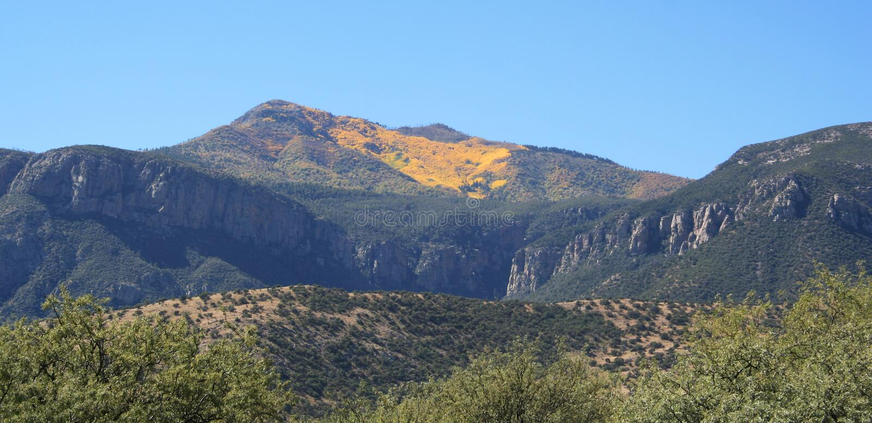 De herfst van de Berg Huachuca royalty-vrije stock afbeeldingen