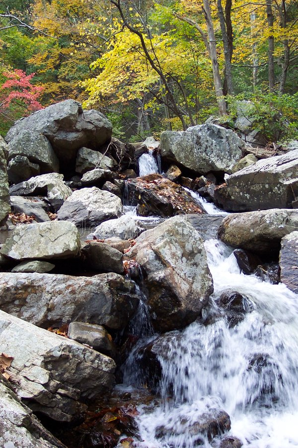 De Herfst van de canion royalty-vrije stock foto
