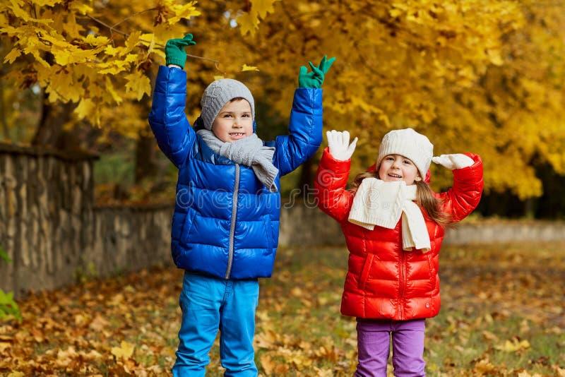 De herfst van de kinderen in het park Jonge geitjesspel in aard stock afbeelding
