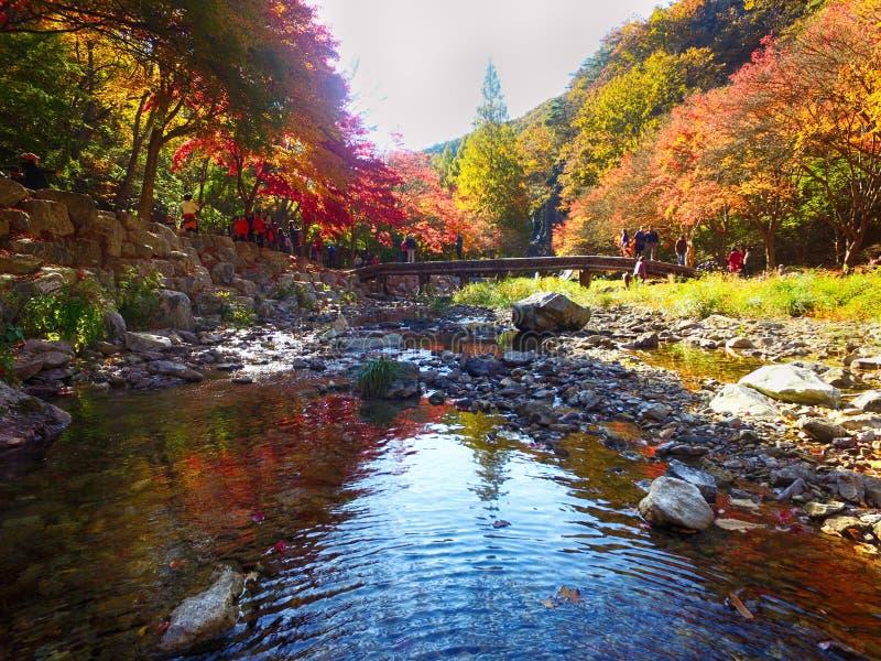 De herfst van Gancheonsan-Berg, Sunchang, Jeollanamdo, Zuid-Korea stock afbeeldingen
