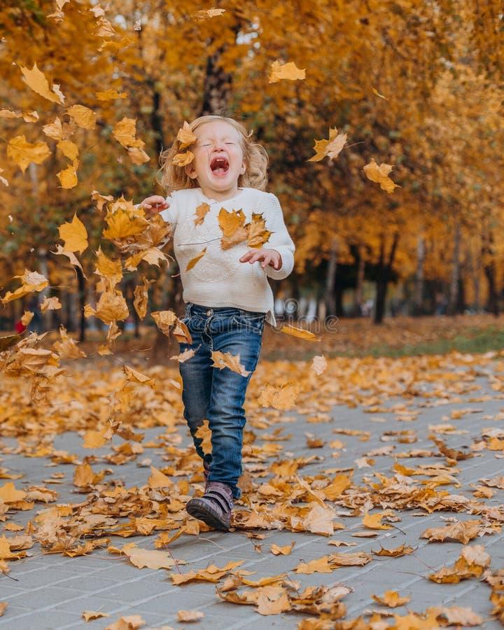 De herfst van het meisjespark werpt op gouden gevallen bladeren stock afbeelding