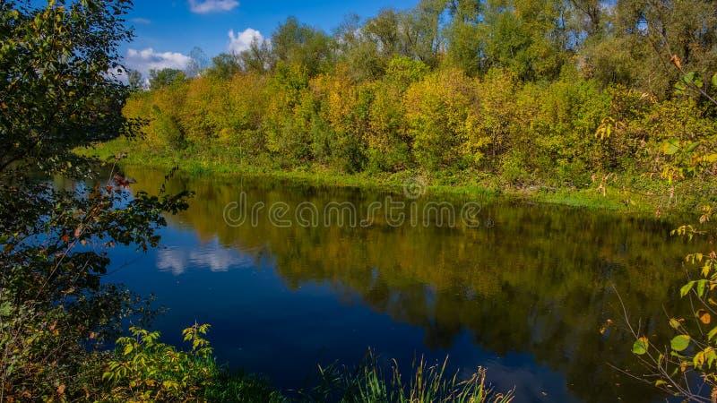 De herfst vergankelijk bos en rivier op een zonnige dag Verbazend landschap stock foto
