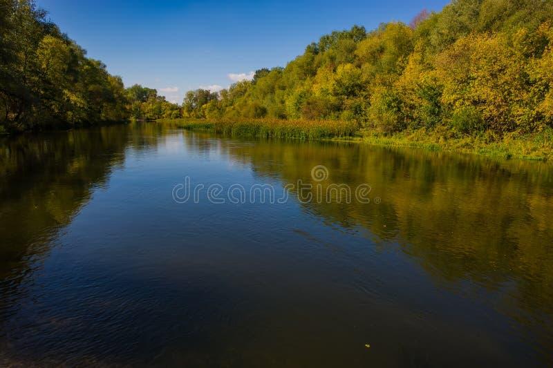 De herfst vergankelijk bos en rivier op een zonnige dag Verbazend landschap royalty-vrije stock fotografie