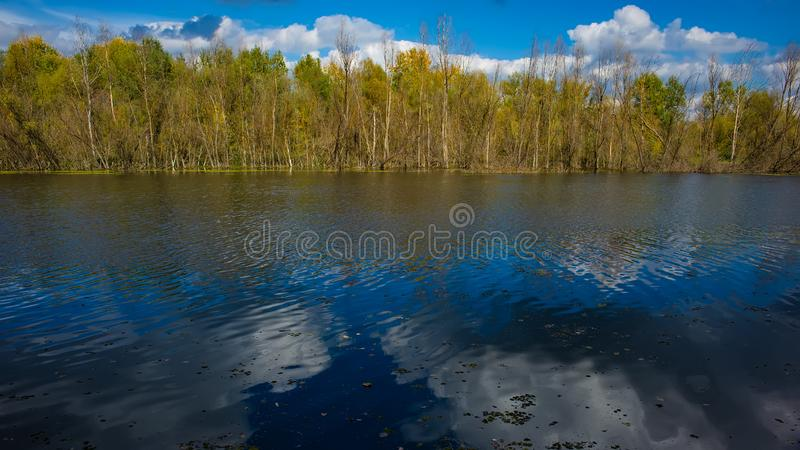 De herfst vergankelijk bos, waterrivier en de rivierbank op een zonnige dag Verbazend landschap royalty-vrije stock afbeelding