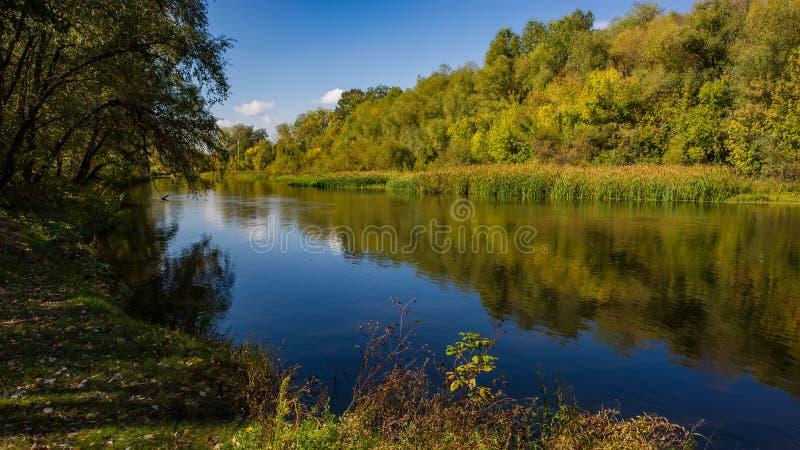 De herfst vergankelijk bos, waterrivier en de rivierbank op een zonnige dag Verbazend landschap stock fotografie