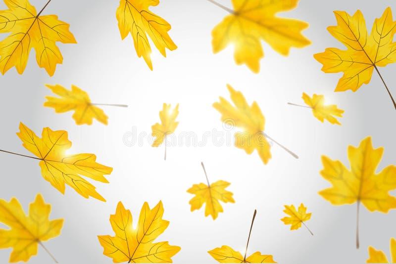 De herfst verlaat gevallen bladerenachtergrond vectorillustratie stock illustratie