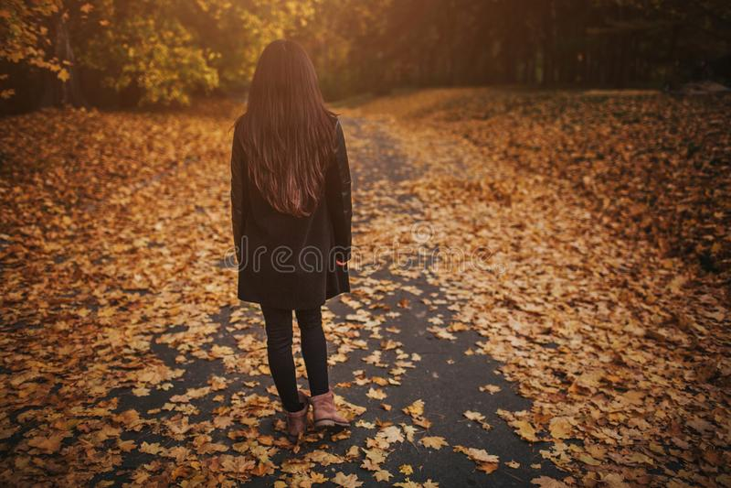 De herfst verlaat het vallen op gelukkige jonge vrouw in bosportret van zeer mooi meisje in dalingspark royalty-vrije stock foto's