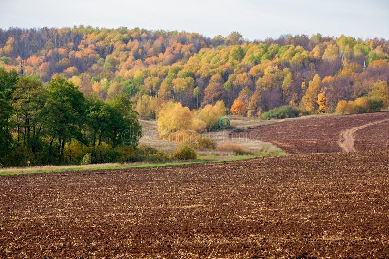 De herfst, is de weg ongeplaveid, vers geploegd gebied, een heuvel covere stock fotografie