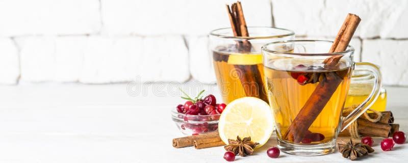De herfst of de winter hete thee met fruit, bessen en kruiden royalty-vrije stock fotografie