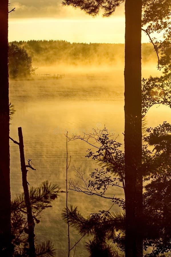De herfst zonsopgang op de rivier Rivier bij dageraad, mist over het water De schoonheid van zonsopgang Vroege ochtend stock foto