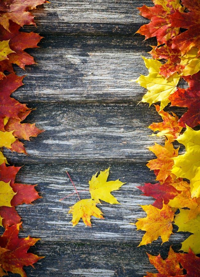 De herfstachtergrond stock afbeelding