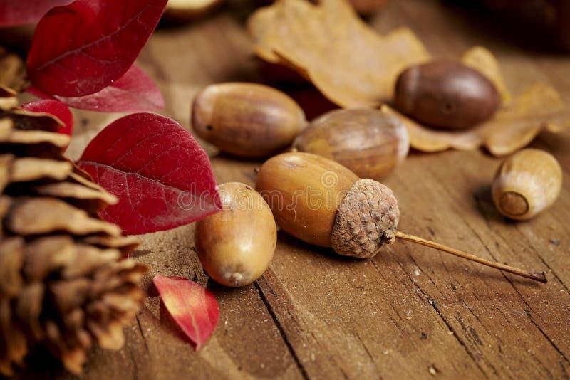 De herfstachtergrond met bladeren, eikels en kegels op een oude houten lijst stock foto's