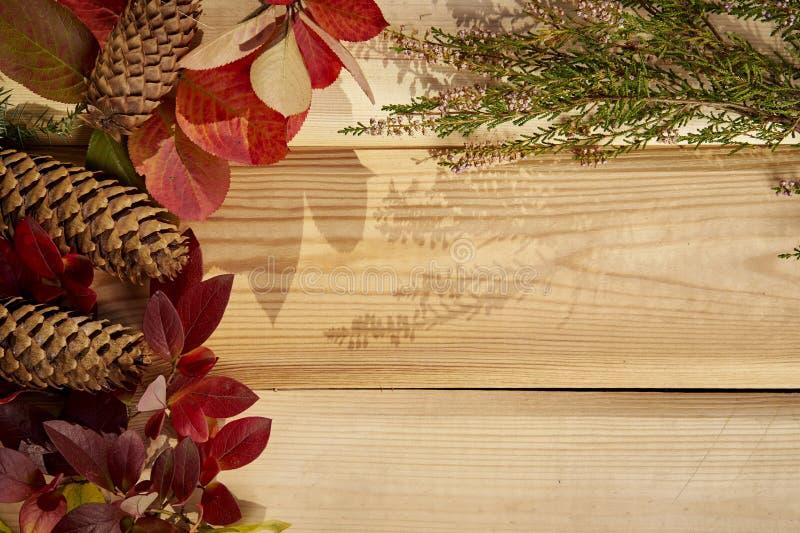 De herfstachtergrond met bladeren, eikels en kegels op een oude houten lijst royalty-vrije stock fotografie