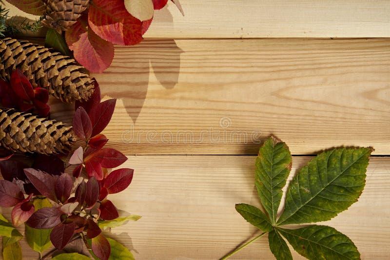 De herfstachtergrond met bladeren, eikels en kegels op een oude houten lijst royalty-vrije stock foto's
