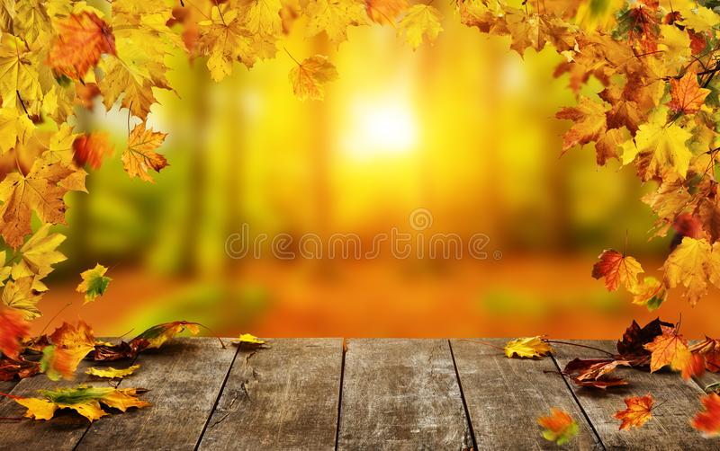 De herfstachtergrond met dalende bladeren en lege houten lijst stock afbeeldingen
