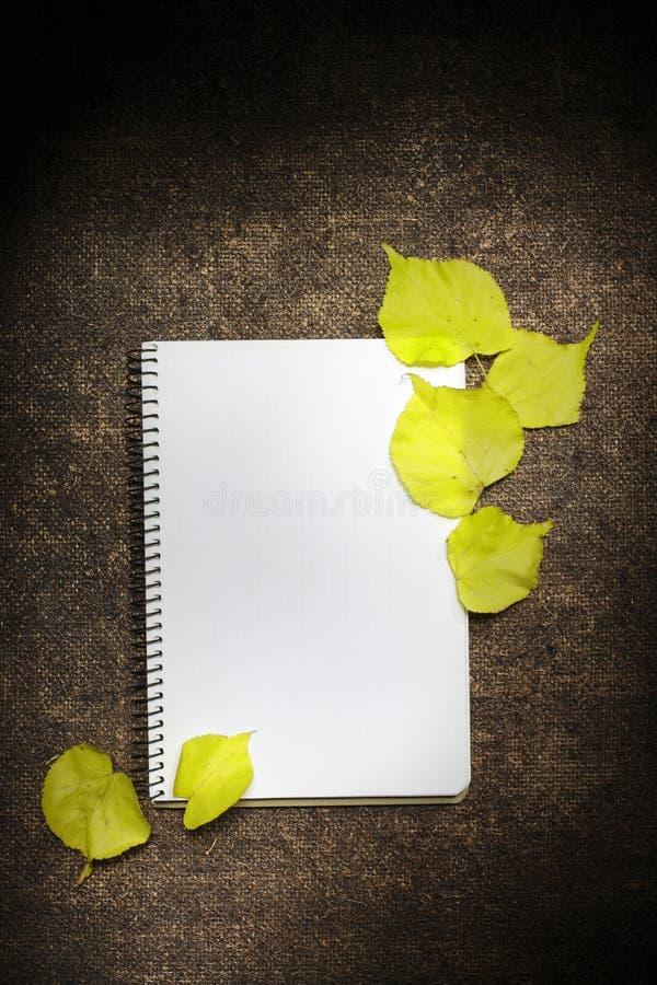 De herfstachtergrond met gele bladeren en blocnote, open sketchbook voor nota's of tekeningen royalty-vrije stock afbeelding