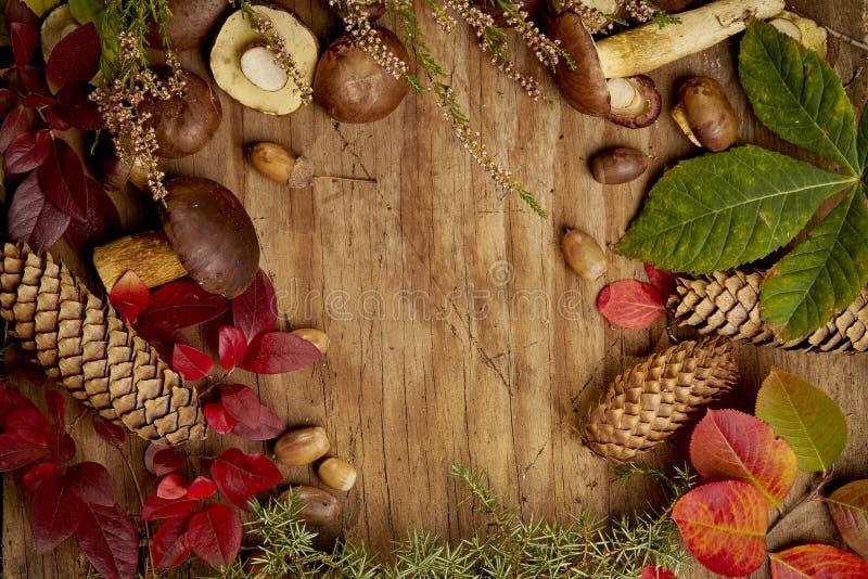 De herfstachtergrond met paddestoelenbladeren en kegels op een oude houten lijst stock foto