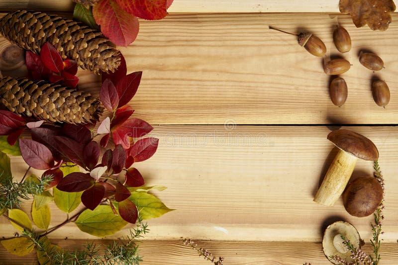 De herfstachtergrond met paddestoelenbladeren en kegels op een oude houten lijst royalty-vrije stock foto