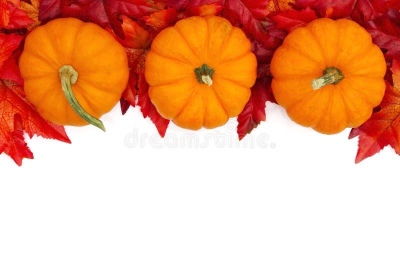 De herfstachtergrond met pompoenen en rode en oranje dalingsbladeren stock afbeeldingen