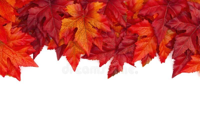 De herfstachtergrond met rode en oranje over geïsoleerde dalingsbladeren stock foto