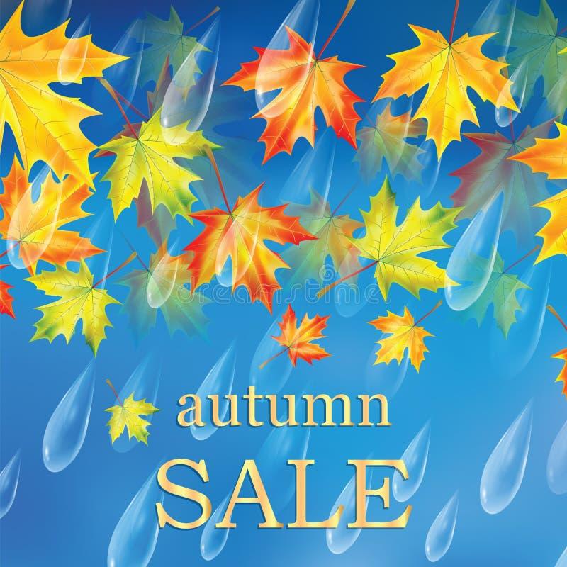 De herfstbanner met regendruppels en bladeren van esdoorn stock illustratie