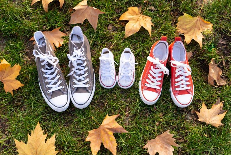 De herfstbeeld van de tennisschoenen van familieschoenen gumshoes op gras in zonsonderganglicht in in openlucht familielevensstij stock foto
