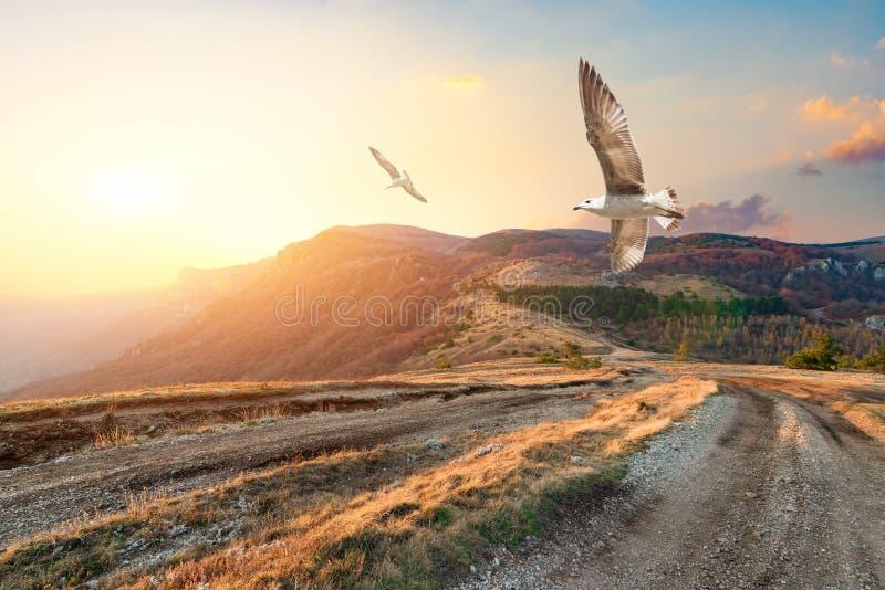 De herfstbergen van de Krim stock afbeelding