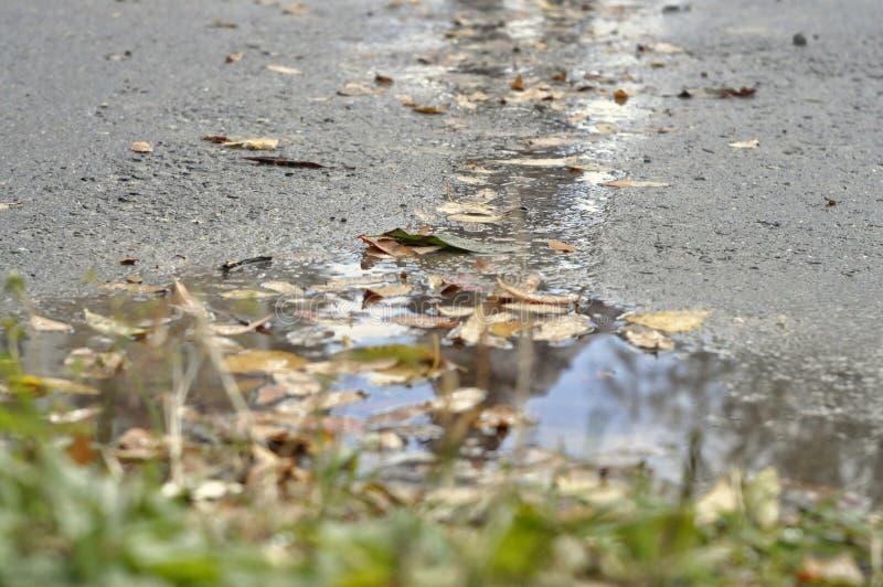 De herfstbezinning van de stadsstraat royalty-vrije stock fotografie