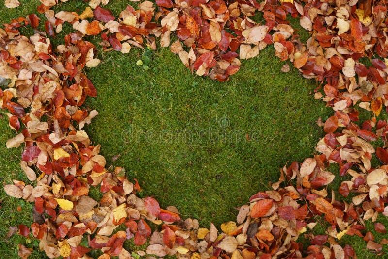 De herfstbladeren in de vorm van een hart met copyspace royalty-vrije stock foto