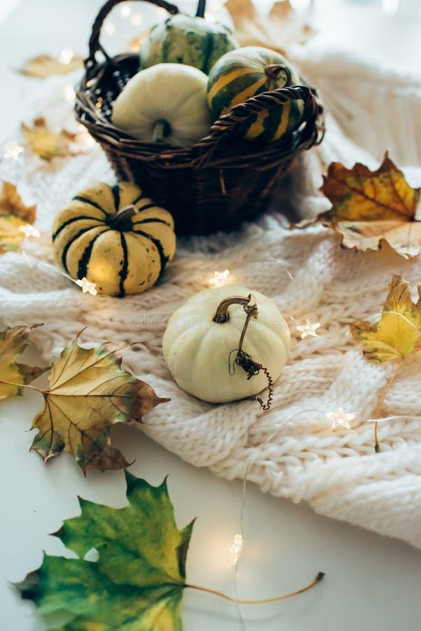 De de herfstbladeren en de kleine decoratieve pompoenen op warme comfortabel breien sw royalty-vrije stock foto's