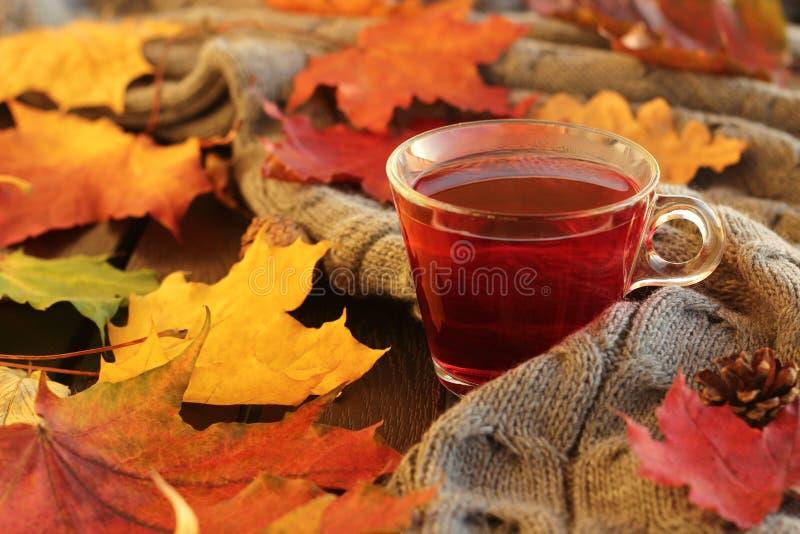 De herfstbladeren en kop thee stock fotografie