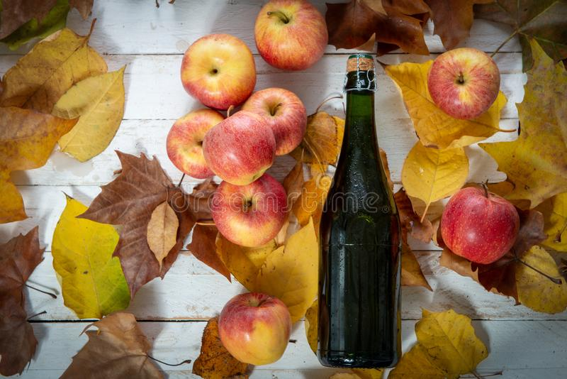 De herfstbladeren met een fles van cider en en appelen royalty-vrije stock afbeelding