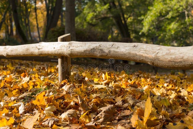 De herfstbladeren onder een houten omheining royalty-vrije stock afbeelding
