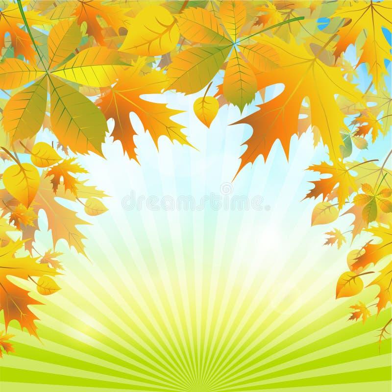 De herfstbladeren op de abstracte achtergrond van de aard stock illustratie