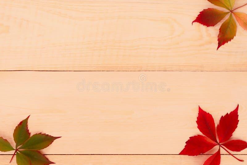 De herfstbladeren op een houten achtergrond stock foto