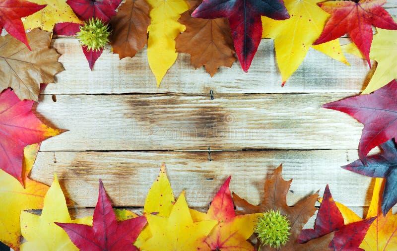 De herfstbladeren op een houten achtergrond stock foto's