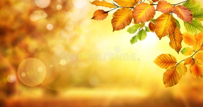 De herfstbladeren op flikkerende bokeh achtergrond stock afbeelding