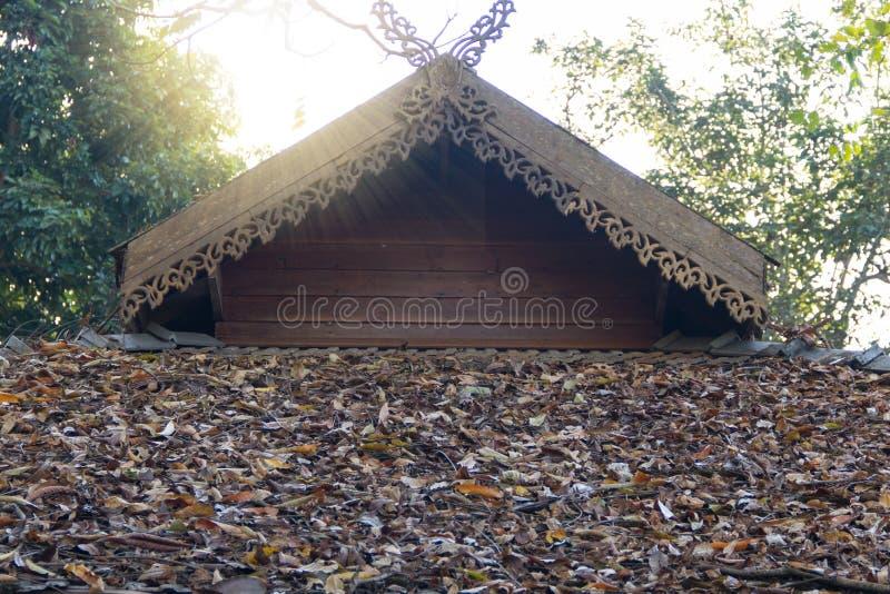 De herfstbladeren op het dak stock afbeelding