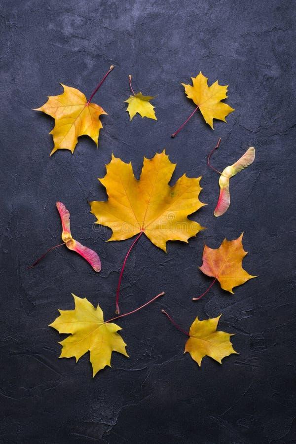 De herfstbladeren over donkere concrete achtergrond met exemplaarruimte Model voor seizoengebonden aanbiedingen en vakantieprentb royalty-vrije stock fotografie