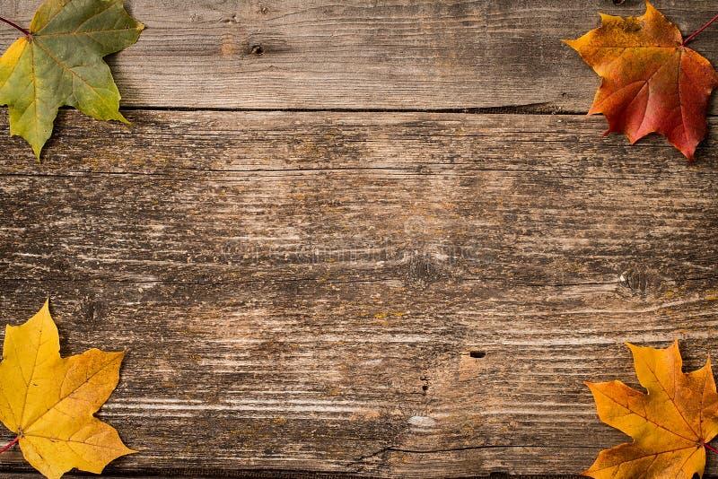 De herfstbladeren over houten achtergrond met exemplaarruimte stock foto's