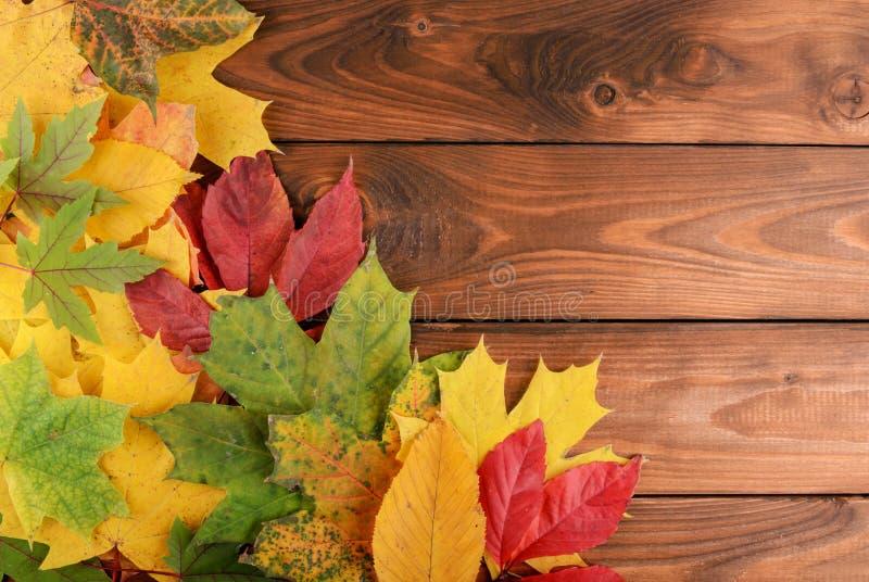 De herfstbladeren over houten achtergrond met exemplaarruimte royalty-vrije stock afbeelding