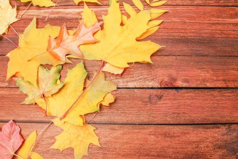 De herfstbladeren over houten achtergrond met exemplaarruimte stock foto